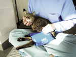 Small rehabilitacja ryc1 opt
